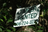 timberwantedgreenerivervalley