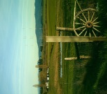 The pastoral setting of the agriculturally productive Willamette Valley, green even in February.  Photos is south of Eugene, Oregon, Feb. 2010.