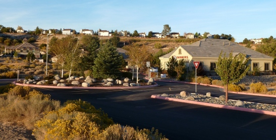 Roundabout at entrance to Monte Vista Office Park, with Farmers Insurance, and sagebrush in bloom, October, 2012.
