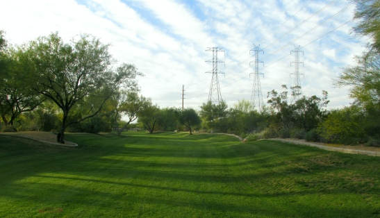 This wash in Greyhawk has been planted with irrigated turfgrass, that is green most of the year. Smart growth cities do not replant their washes with grass or native plants. Instead, they divert water into fenced retention basins that collect mosquitos.