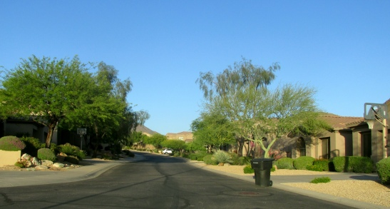 Typical street in McDowell Mountain Ranch.
