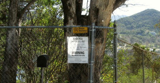 toaks_tree_protection_fence_1